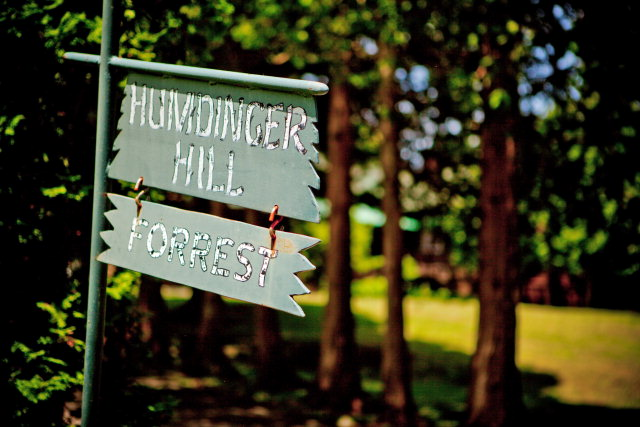 Humdinger Hill Sign